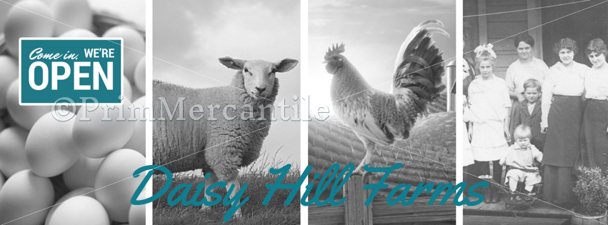 Daisy Hill Farm Facebook Timeline Cover